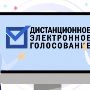 Жители Иркутской области могут протестировать дистанционное электронное голосование